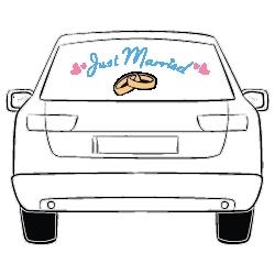 Autobeschriftung Hochzeit JGA Just Married