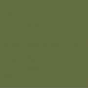 Lederkarton Oliv
